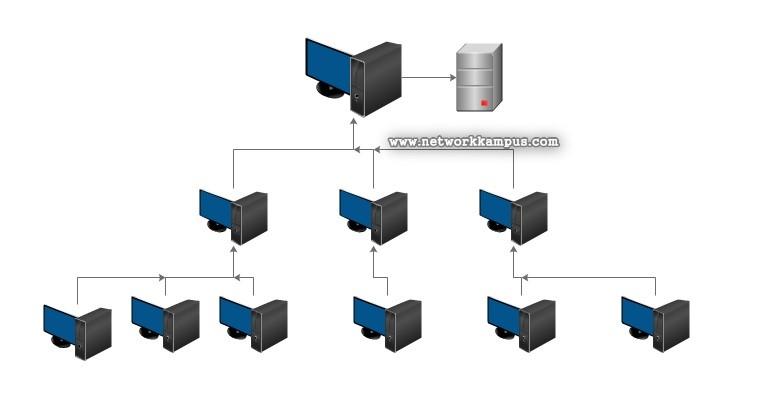 network nedir? ne işe yarar?