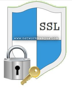 SSL nedir ne işe yarar secure sockets layer güvenli soket katmanı