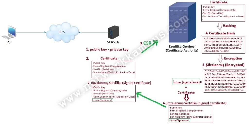 bics certification keys Partners can now complete the training and specialisation exams to be certified as opn bi cloud service specialist this means as a consultant, you can be recognised as a bi cloud service specialist, contributing to your partner company's obi foundation specialisation (of which bics is now a.