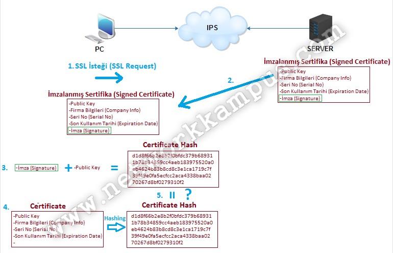 SSL nedir ne işe yarar çalışma mantığı
