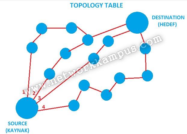 eigrp topoloji tablosu şema