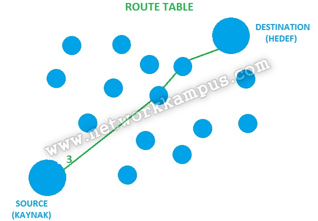 eigrp route tablosu şema