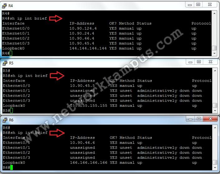 ospf protokolü için IP'ler