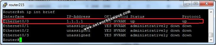 Cisco router IP bilgileri
