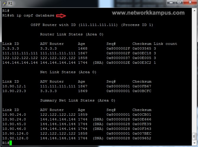show ip ospf database komutu ile LSDB database görmek ornek