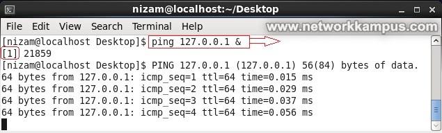 linux centos kırmızı şapka rhel arka planda komut dosyası çalıştırmak