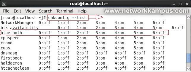linux centos red hat rhel servisleri listelemek