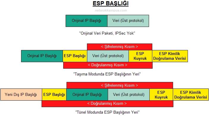 ESP başlığı
